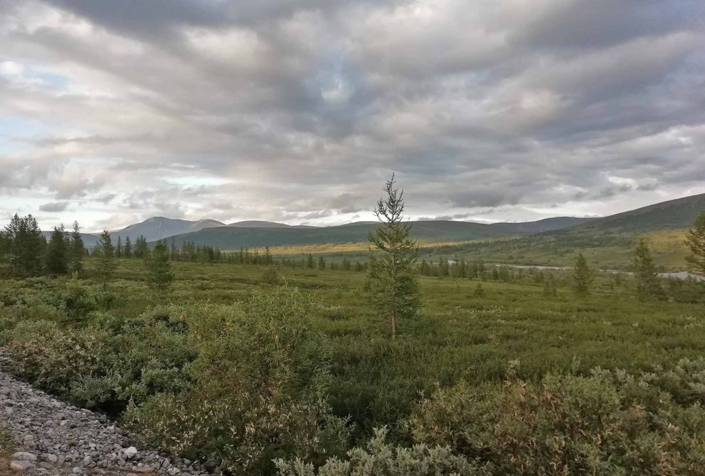 Нияю, Полярный Урал, Пайпудына, Polar Travel, туры в Арктику
