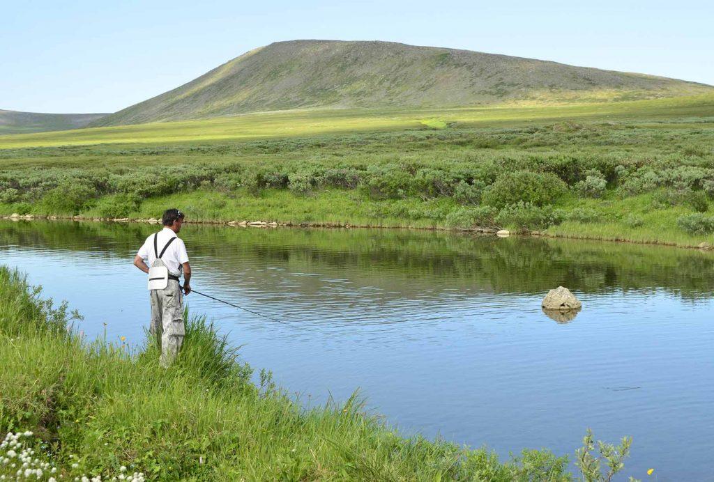 Естовис, Полярный Урал, Нияю, Polar Travel, туры в Арктику