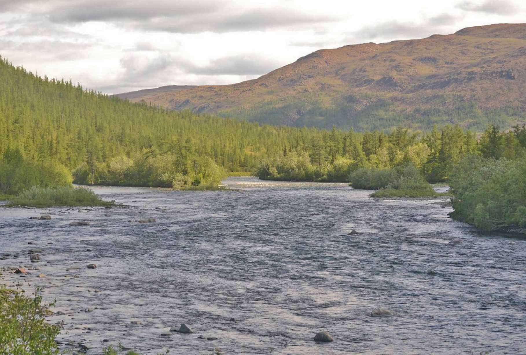 Река Большая Хадата